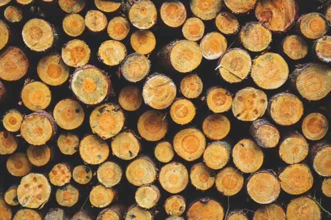wood iii